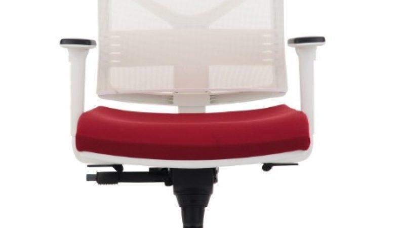 Ergonomikus irodai széket otthonra is!
